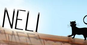 Emailing pour les produits d'antennes et réception numérique de la marque NELI